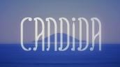 logo clipe